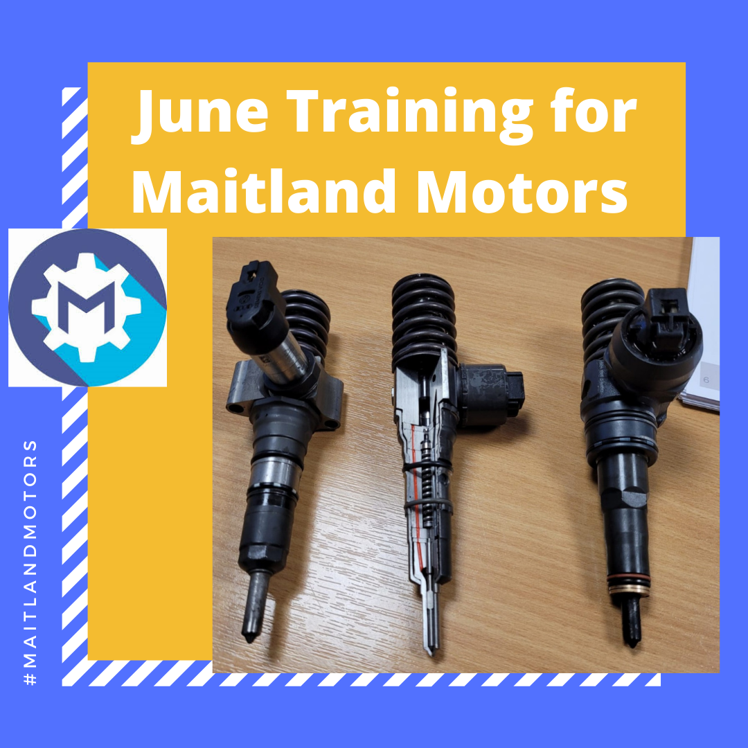 June Training for Maitland Motors